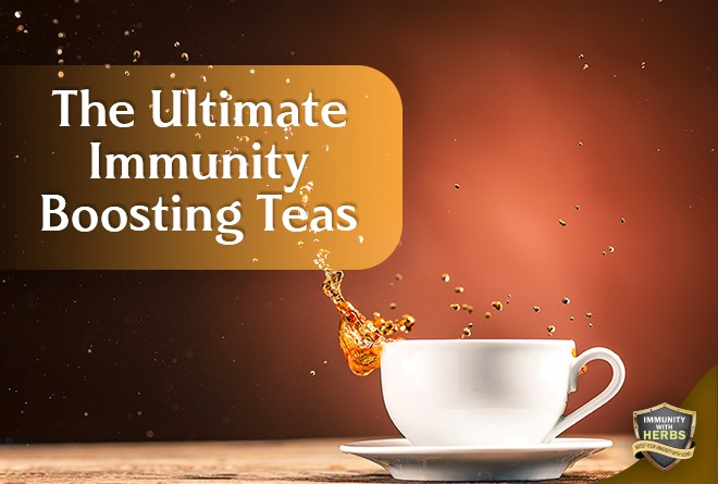 Immunity booster teas